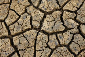 Spiritual Reflection: A Dry Spell