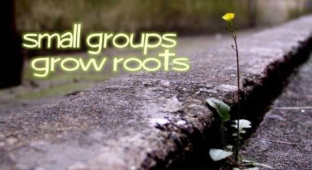 Small Groups grow