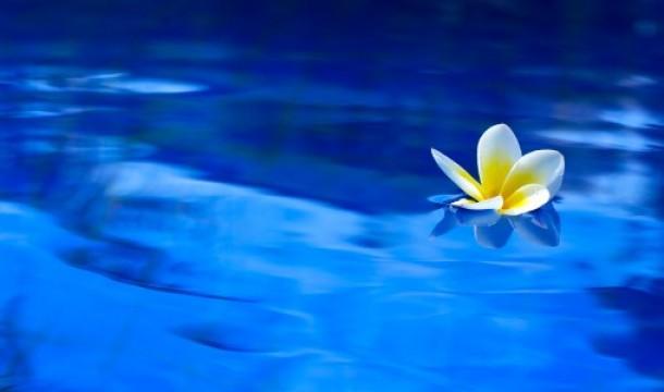 A Creative Mindfulness Retreat