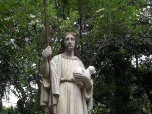 Reflection: Who is Your Good Shepherd?