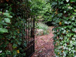 garden gate path green