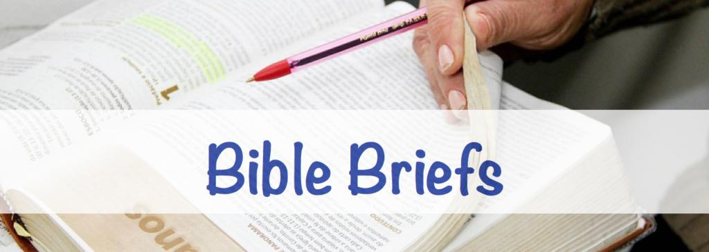 bible-briefs-banner