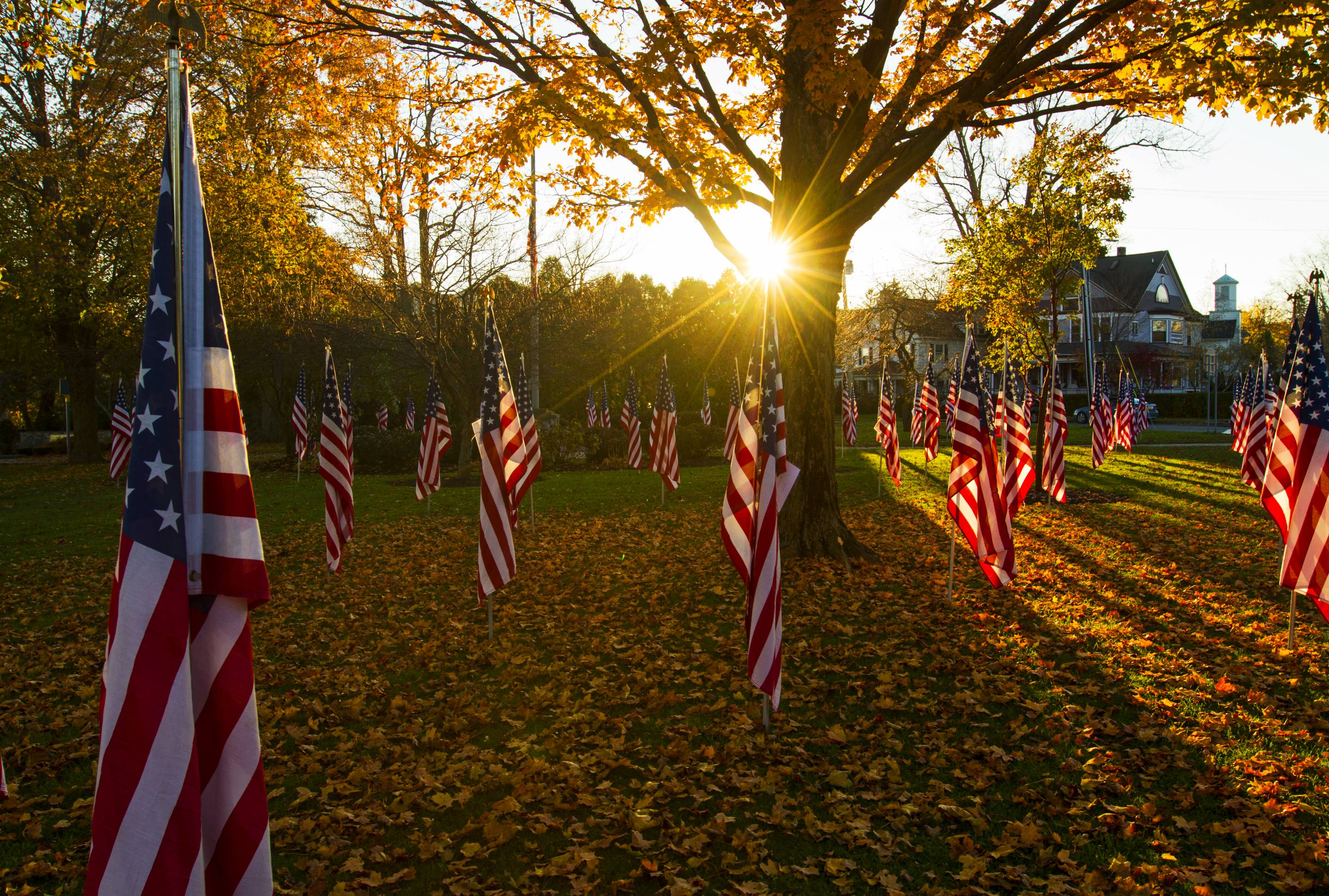 10 Trauma-Informed Ways to Observe Veterans Day