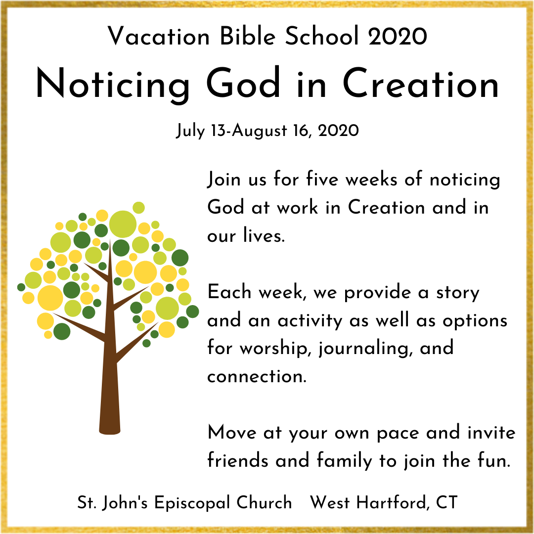 Noticing God In Creation: At Home VBS For Families