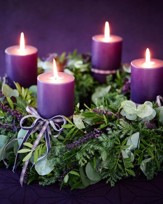Four purple candles on a wreath of greens. Candles are lit. Background is purple.