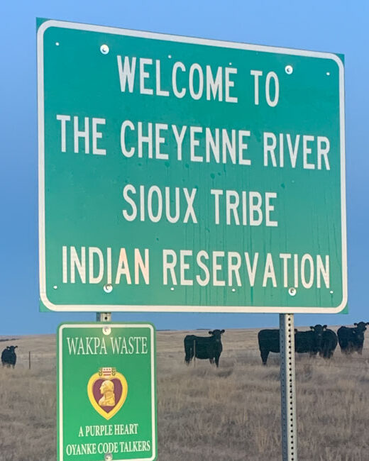 Green road sign with cows in background. Sign reads Welcome To The Cheyene River Sioux Tribe Indian Reservation.